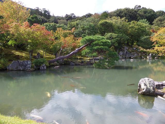 Tenru-ji Temple Gardens 9