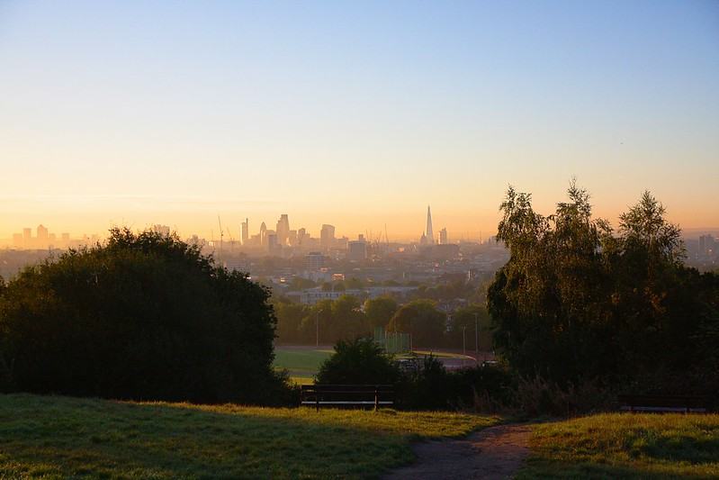 Hampstead Heath at dawn - London park