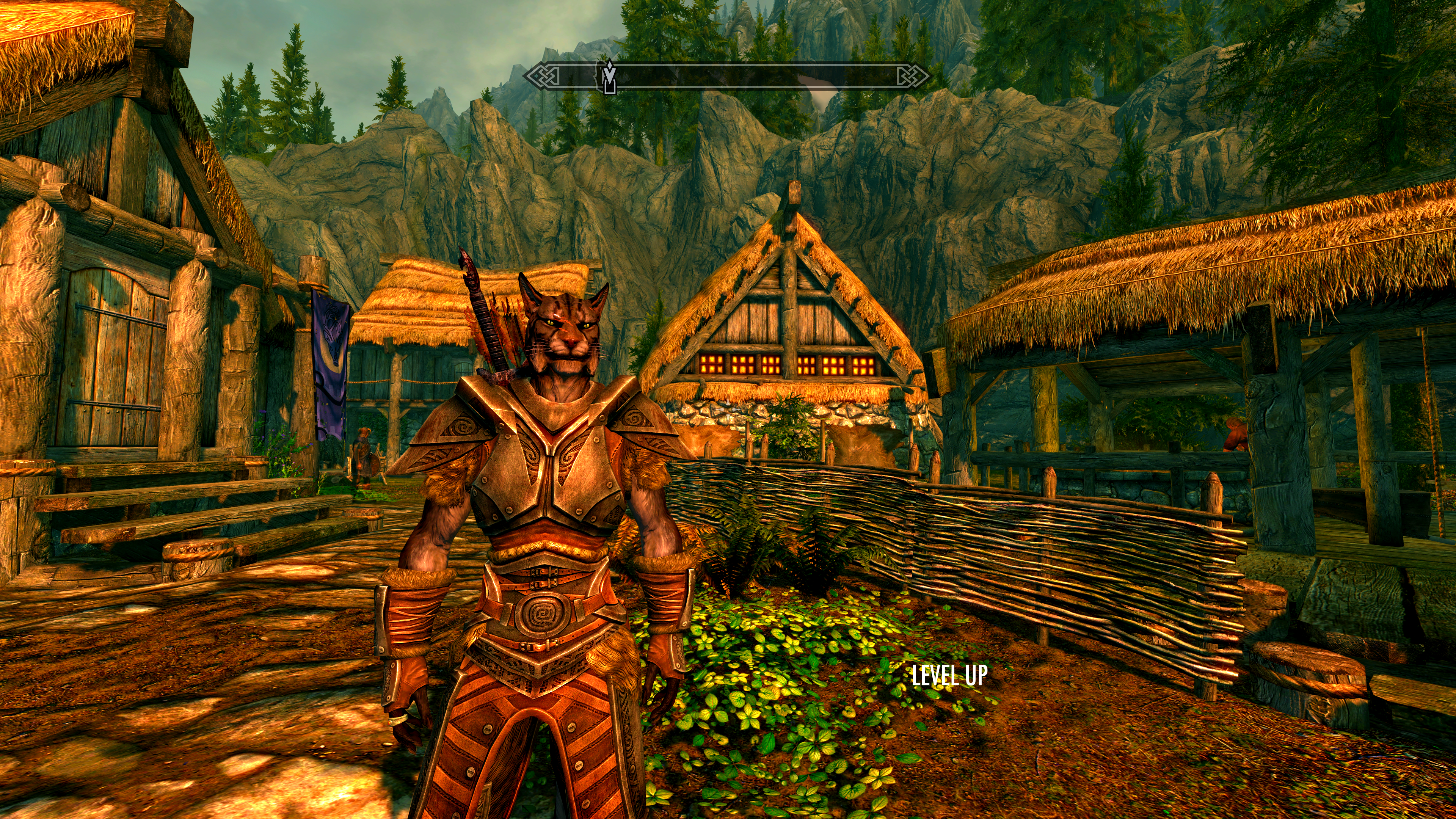 how to buy a house in riften skyrim pc