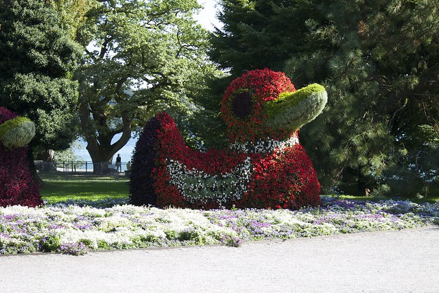 Mainau island in Lake Constance , Germany