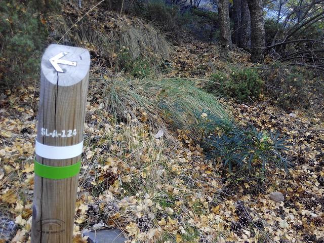 Senderismo en el Parque Sierra de Tejeda
