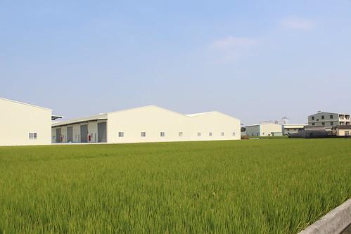 台中南屯,非法廠房林立農地上。