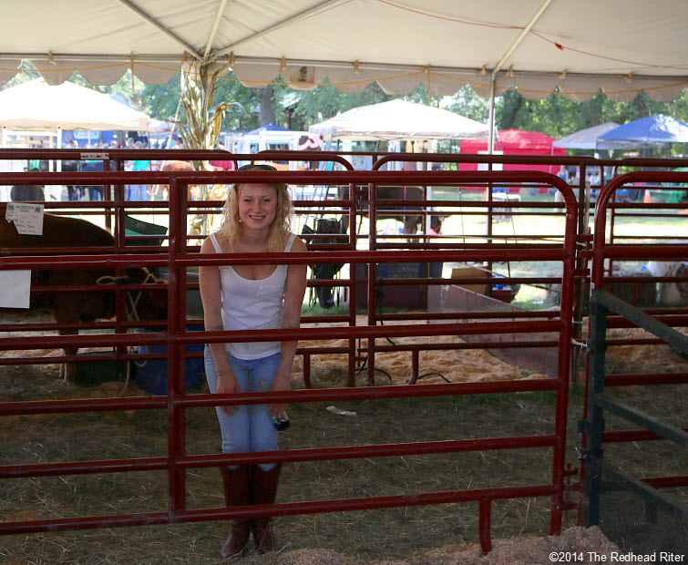23 alyssa with the cows Field Day Of The Past Rockville Virginia