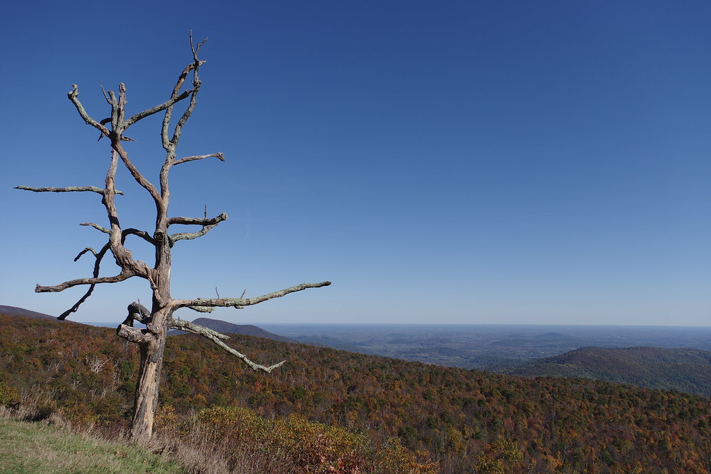 Shenandoah National Park 2014秋