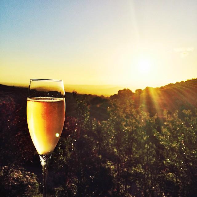 Bilder der Woche 3 aus Südafrika