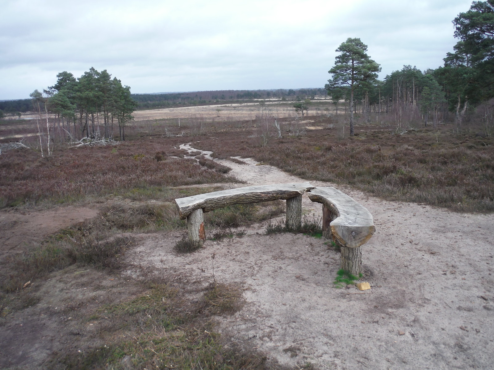 Angled Bench at Viewpoint on Shrike Hill, Thursley Common SWC Walk 144 Haslemere to Farnham - Thursley Common Extension