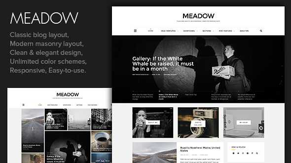 Meadow WordPress Theme free download