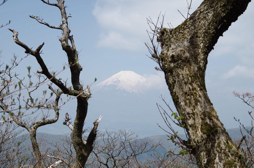 20140504_Mt.Hakone-komagatake 007