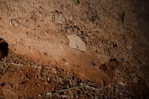 Pottersville Excavation-018