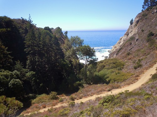 Hiking Path to Partington Cove