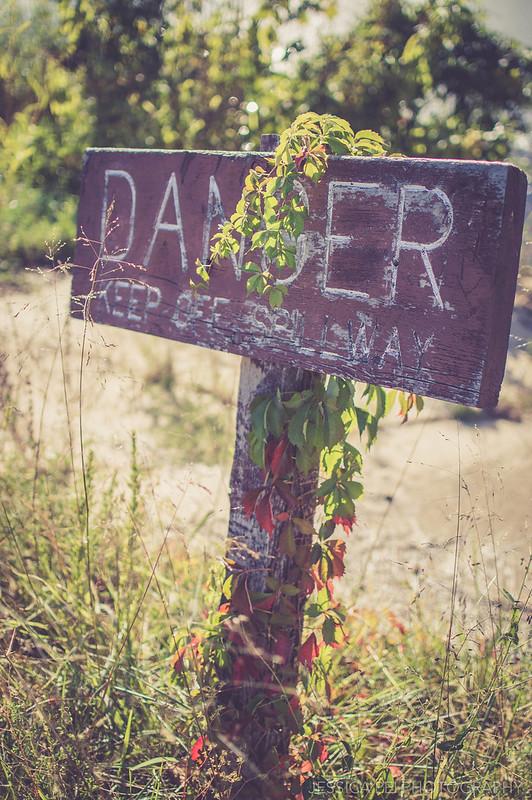 sign wooden danger nature outside sunny