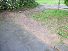 這是兩年多前(2013.5.16)溜滑梯旁邊的草坪邊緣,在大雨的時候,排水不良的情形。