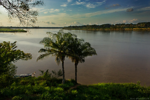 sky green river amazon rainforest ngc lowlands bolivia palmtree tropical amazonia beni riberalta canon550d