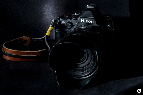 Nikon Df: the Traveler's Review
