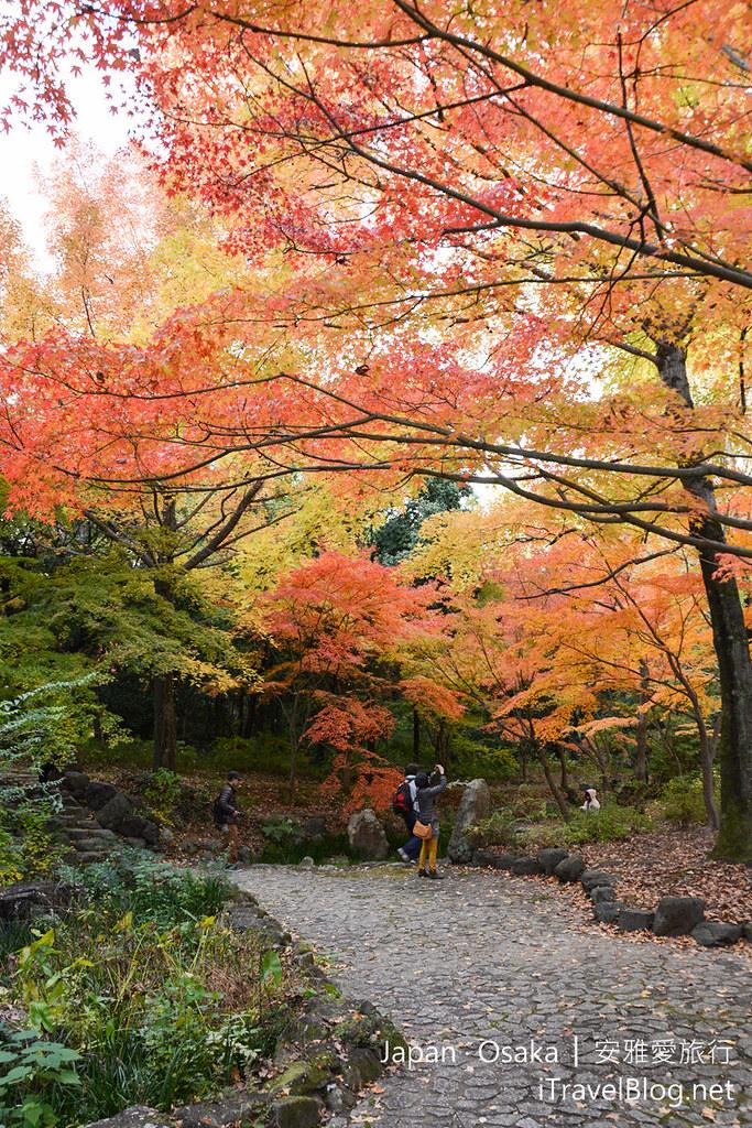 大阪赏枫 万博纪念公园 红叶庭园 09