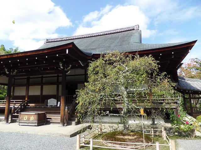 Tenru-ji Temple Gardens 4