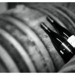Weingut Böjt aus Eger
