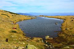 Laguna de Los Pájaros III