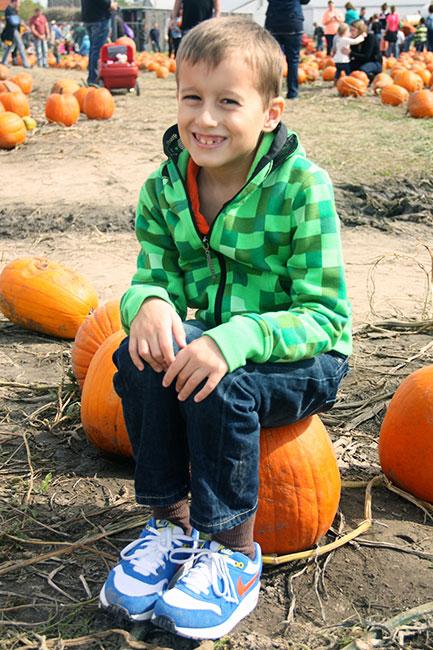 Nat-on-a-pumpkin