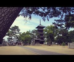 Zentsuji Temple in Shikoku (Japan)