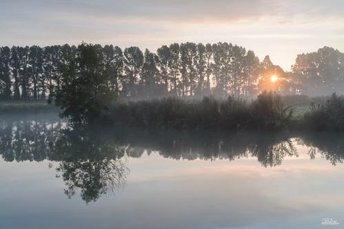 mist fog sunrise landscape dawn riverthames oxfordshire buscot jaketurner canon5dmarkiii cheesewharf jrturnerphotography