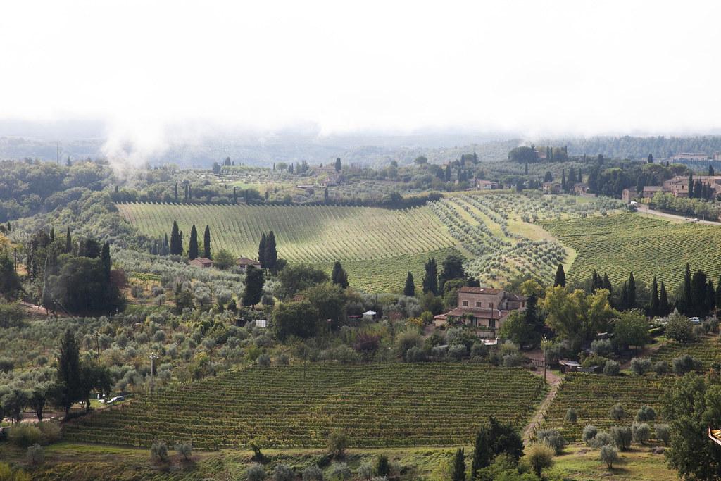 2014_Italy_5D2-6664