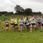 2014-star-of-the-sea-xc-stamullen-041
