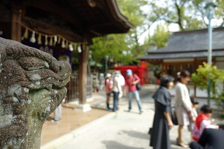 One scene in Fukagawa Shinto Shrine No.1.