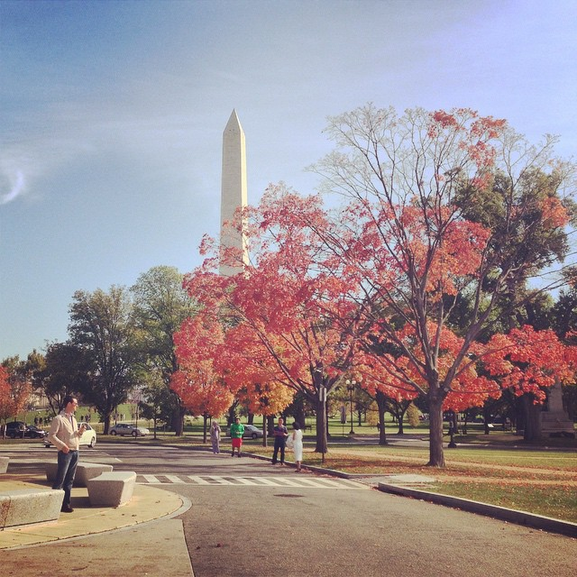 Starting to look like fall #igdc #dc