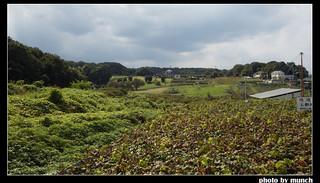 週遭的農村樣貌。圖片來源:munch