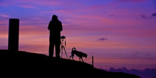 sky silhouette sunrise australia tamarama