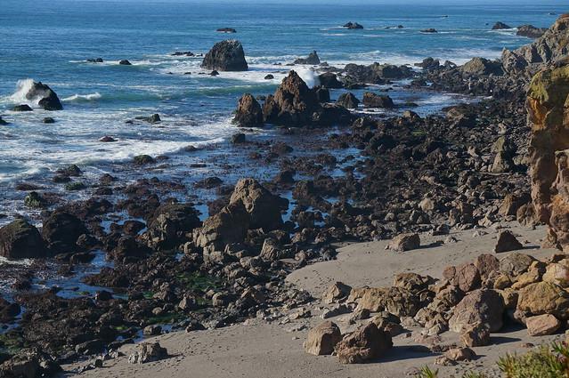 Rocky tidepools north of Bodega Bay