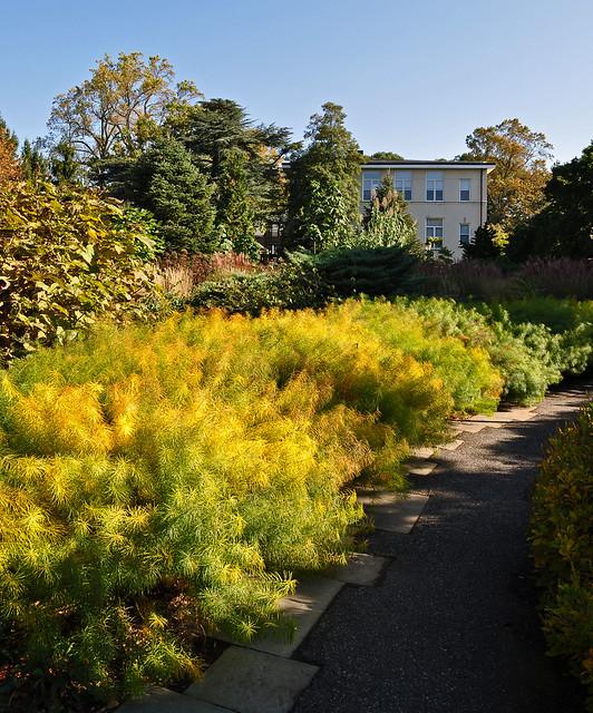 John W. Nason Garden (4)