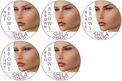 *YS&YS* - Shila Brows Chart