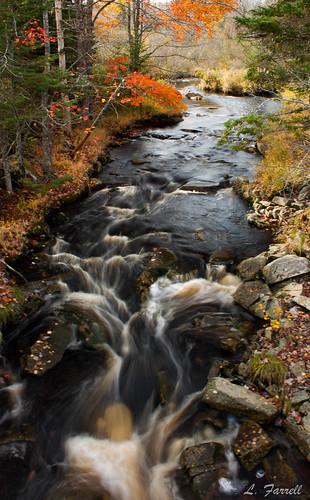 autumn nature water canon river stream novascotia canonrebel dslr canondslr fallcolours canonrebelxsi canonxsi