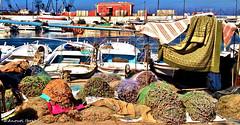 Colors from the Mediterranean, Saida LB.