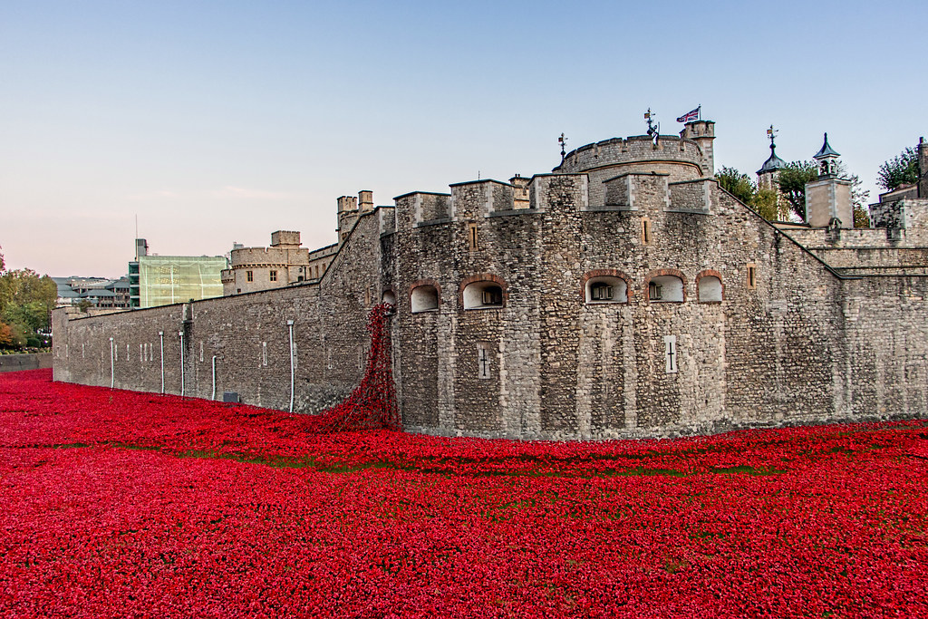 888,246 poppies.  Each poppy represents a British military live lost during World War One.