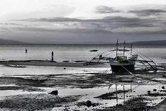 Bang boat at low tide