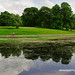 Sefton Park by Brian Sayle