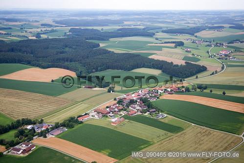Falkenberg - IMG_090465