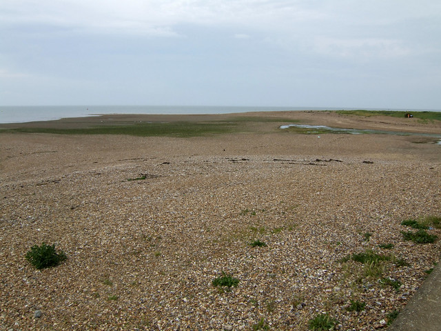 The coast near Swalecliffe