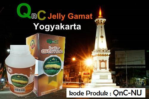 Agen QnC Jelly Gamat Yogyakarta
