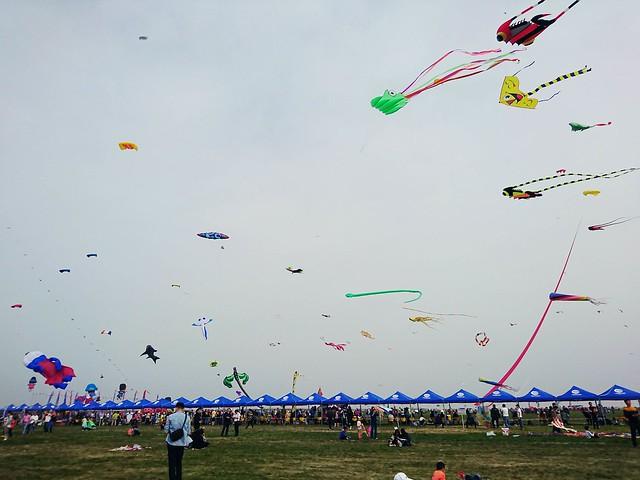 潍坊国际风筝节时间_潍坊国际风筝节