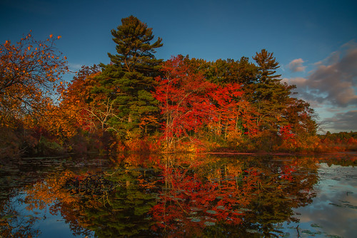 morning autumn sky fall nature colors clouds sunrise reflections landscape leaf pond colorful newengland 6d