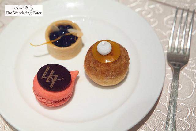 Raspberry macaron, choux puff, mini blueberry tart