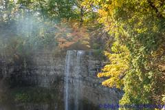 Tews Falls - DSC08750