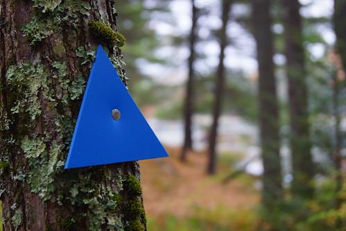 grater-woods-DSC03844