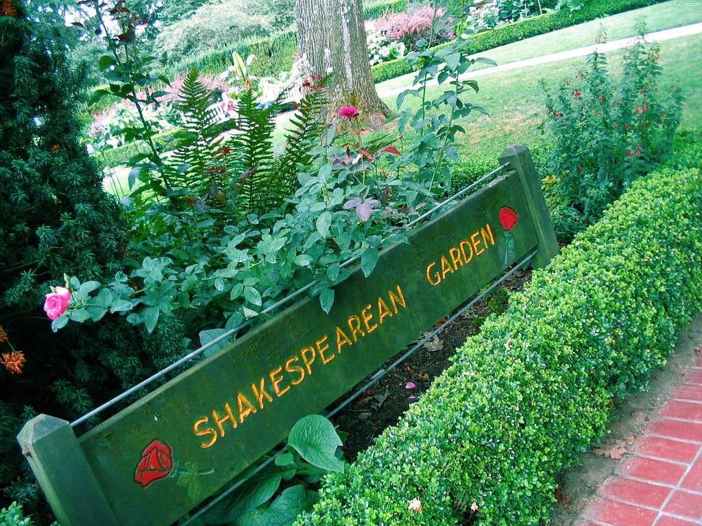 International rose test garden portland photos - International rose test garden portland ...