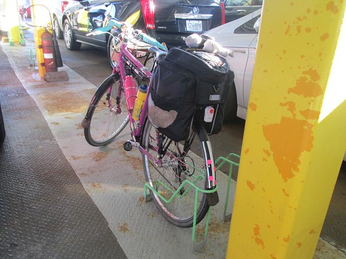 Sweetpea in the bike racks between the stanchions on the ferry