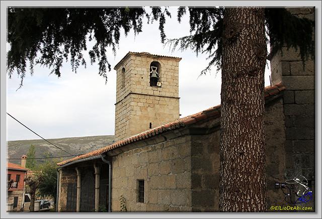Tuit Quedada Micológica en Gredos (8)